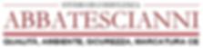 Abbatescianni Certificazioni, Sistemi qualità, Certificazione Qualità Ferrara, ISO 9001