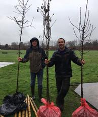 Trees 1 March 2020.jpg