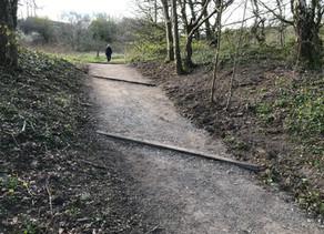 Dane Meadow path Improvements