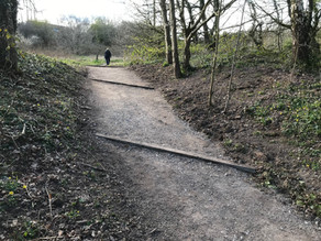 Dane Meadow path Improvements