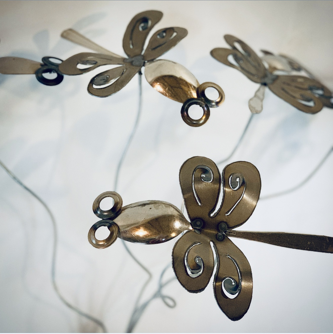 Spoon Dragonfly
