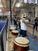 MRU Cougars Volleyball