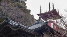 薬王寺でのテンプルステイ