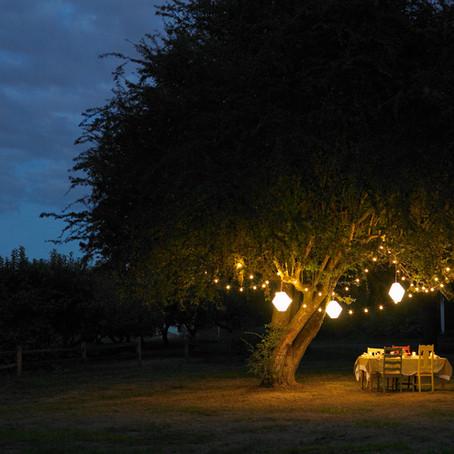 Outdoor Home Lighting Essential