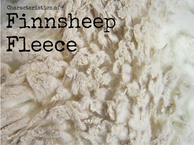 Notes on Finnsheep Fleece