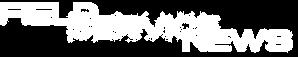 logo NSN w.png