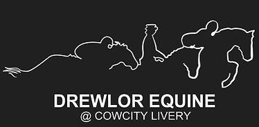 thumbnail_Drewlor Equine Logo.jpg