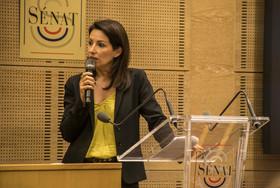 CNCD-Senat-conf-09207.jpg