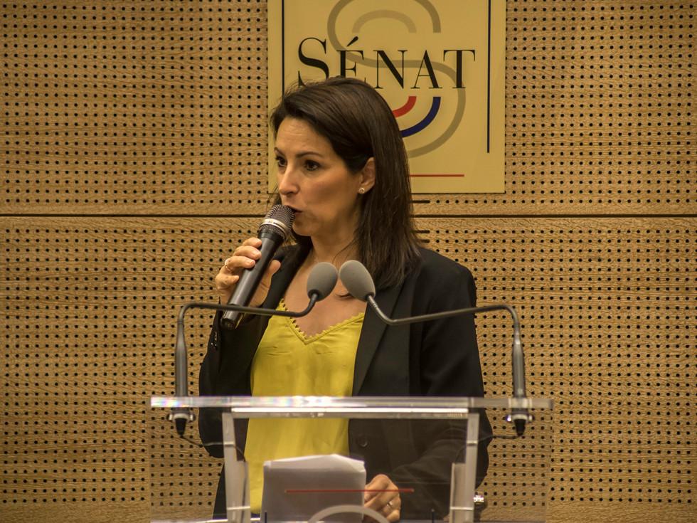 CNCD-Senat-conf-08957.jpg