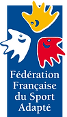 federation-francaise-du-sport-adapte-log