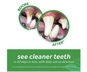 TropiClean Fresh Breath Clean Teeth Original Gel for Dog, 1 ml
