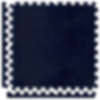 NAVY BLUE SOFT CARPET.jpg
