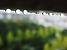 雨水イメージ.png
