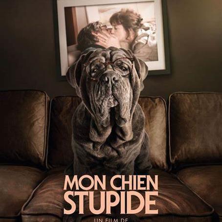 ♥ Mon chien stupide