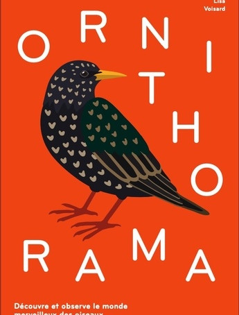 ♥ Ornithorama