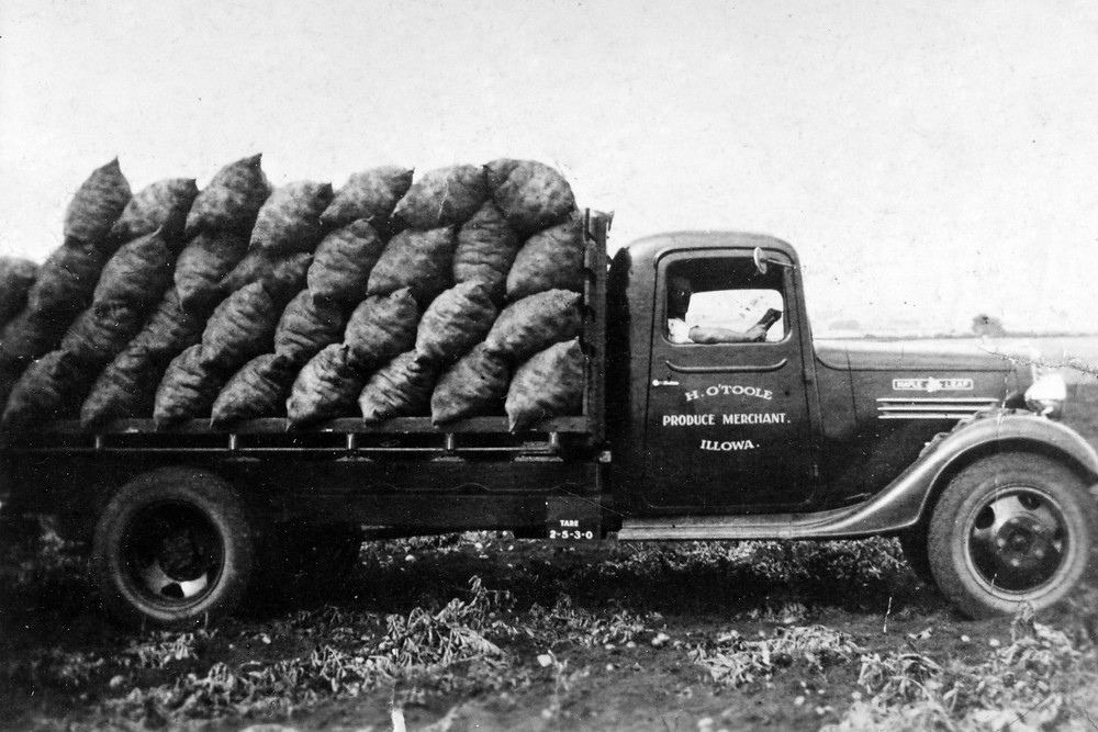 1938 Chev Maple Leaf with potatoes.jpg