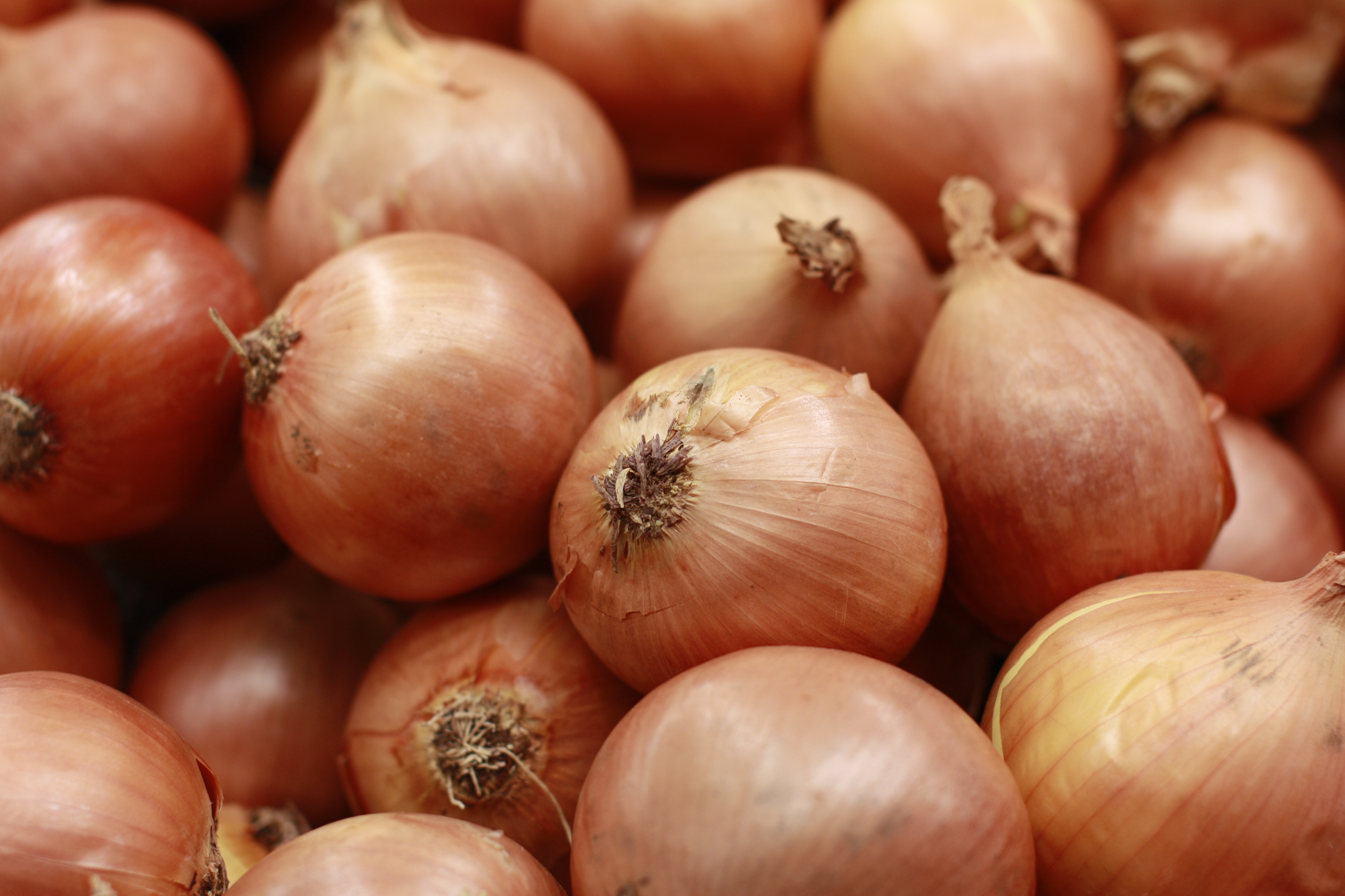 Brown onions topped and tailed