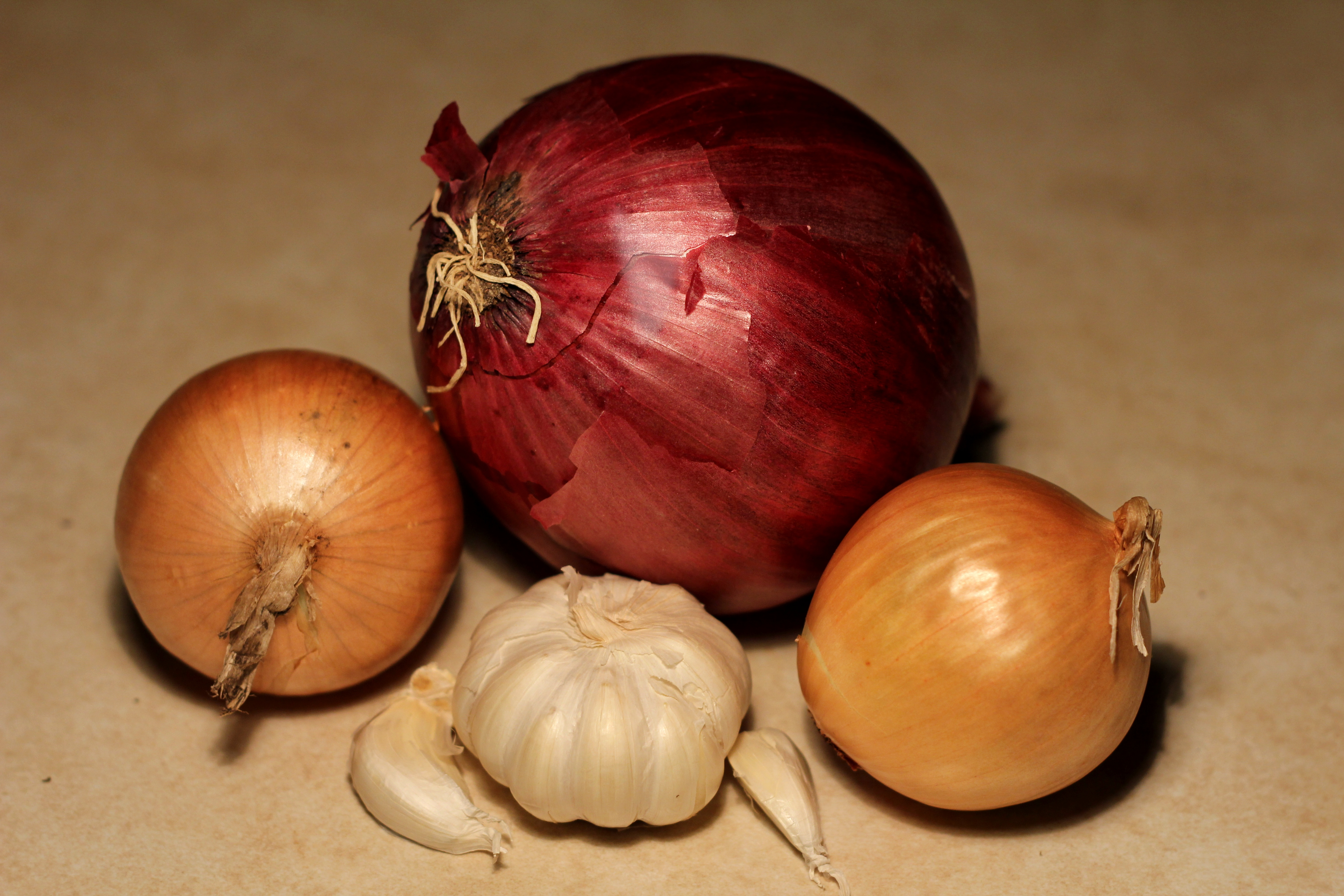 Red & brown onions & garlic bulb