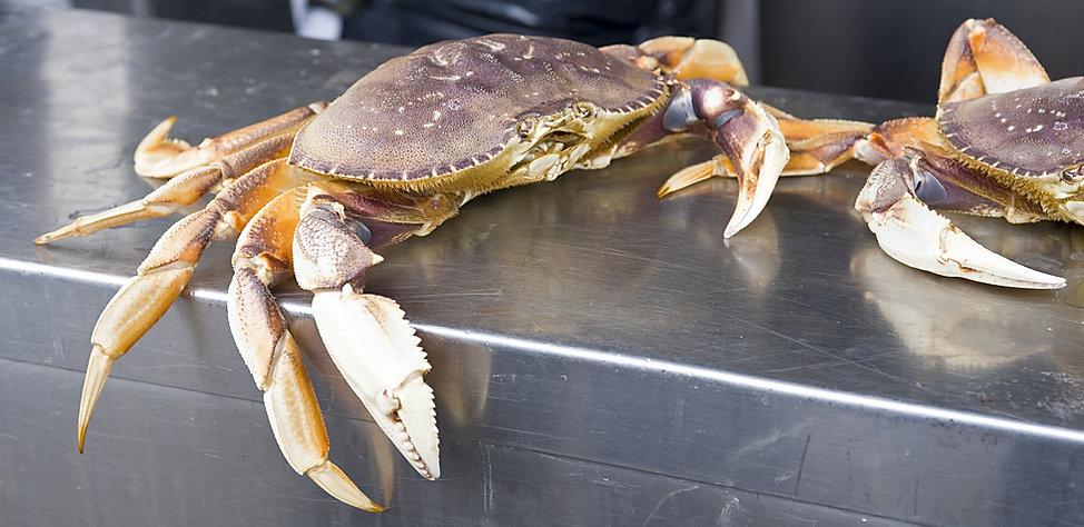 crab at the market.jpg