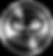 The Private Plane Logo