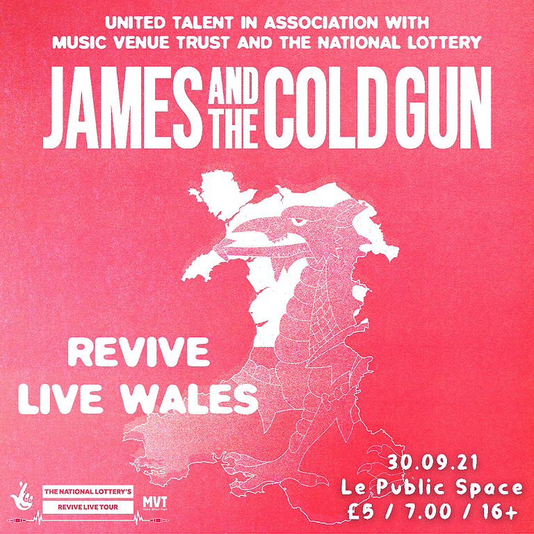 James And The Cold Gun - Revive Live