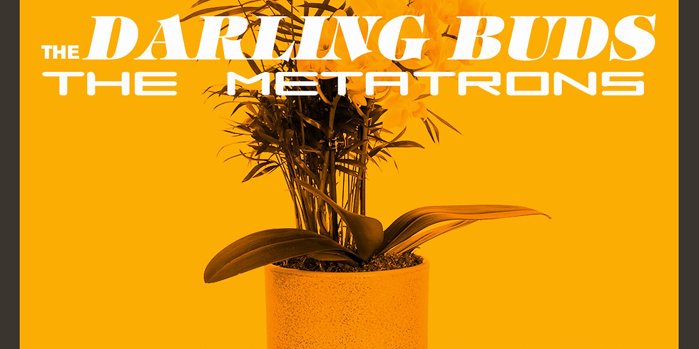 The Darling Buds / The Metatrons