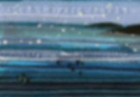 Dolphins Off Cornish Coast