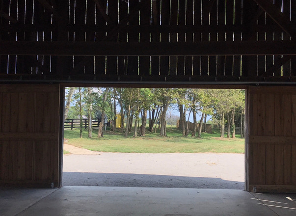 View north from inside barn toward old c