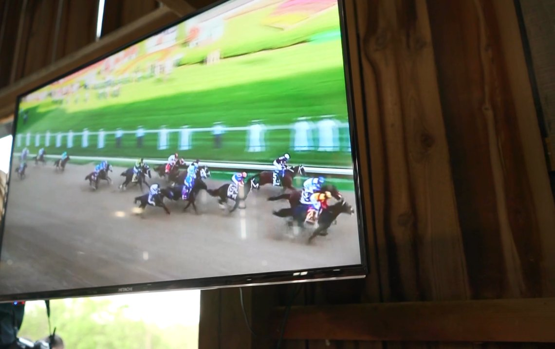 29 TV Horse Race Pic
