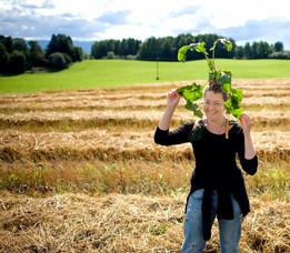 Gjennomsiktig jordbruksforskning
