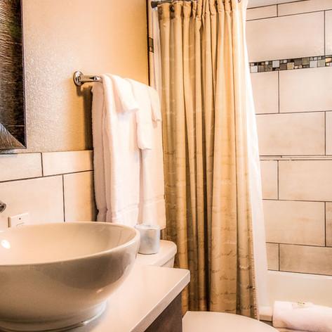 Downstairs Full Bathroom w/ Shower