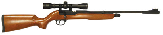 "SMK XS501 ""Rabbit Destroyer"" CO2 Air Rifle"