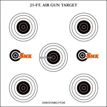 SMK 25ft Airgun Target (100)