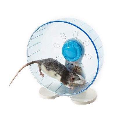 Rodent Wheel