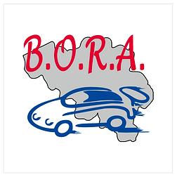 BORA-logo-2.png