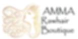 amma logo2.png