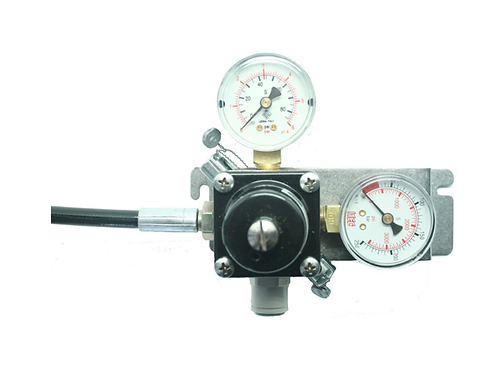 Mixed Gas Primary Regulator (Wall Mount)