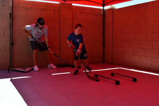 In-Home Hockey Training.jpeg