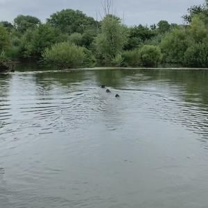 Falke Wassertour