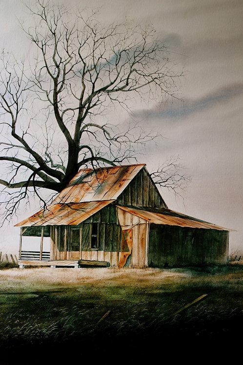 """The Old Oak Tree / Watercolor / 18""""x 23"""""""