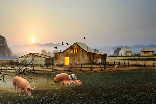 "The Pig Farm / Giclee / 8.5""x 17.5"""