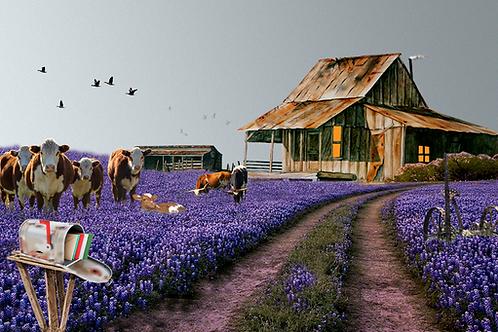 """The Hefers Barn / Giclee / 7.5""""x 12"""""""