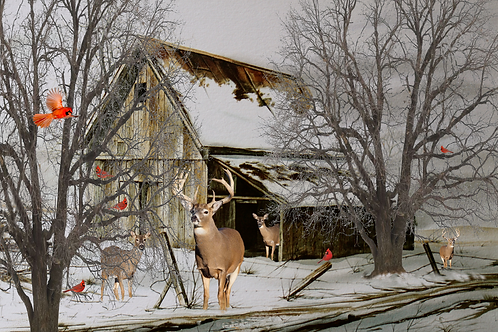 "Uncle's Barn / Giclee / 12.5""x 18"""