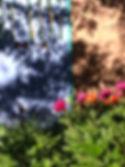 bluegtsahadow.jpg