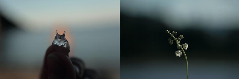 Capture d'écran 2019-10-01 à 15.50.13.pn