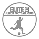 Elite FC Badge 2.png