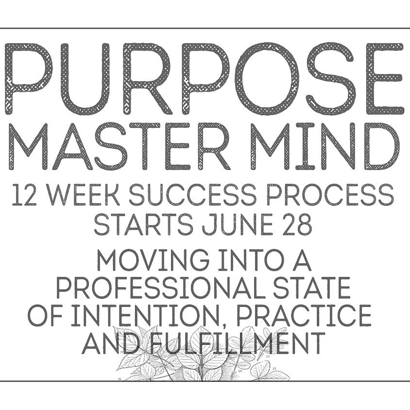 PURPOSE MASTER MIND - 12 week process