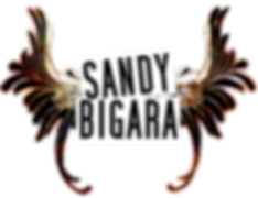 Sandy Bigara LOGO for TALKS 2.png