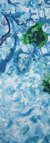 Painting Shark 2