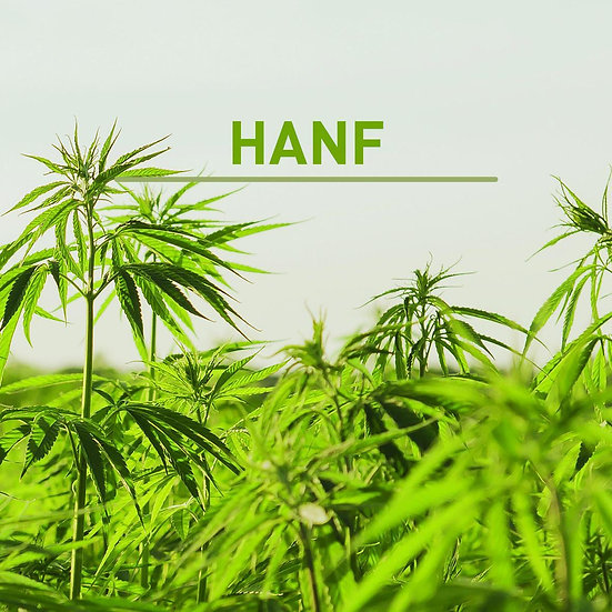 Kopfkissen mit Naturlatex & Hanf